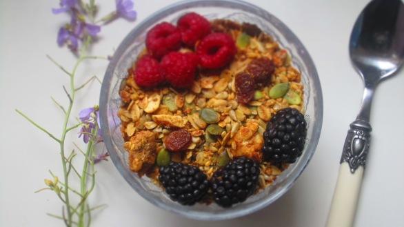 Deliciosamente sano granola 1