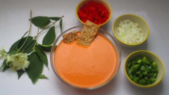 Deliciosamentesano gazpacho (1)